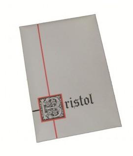 BIGLIETTO BRISTOL F.TO 9 10/10 9*14