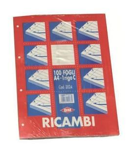 RICAMBIO MAXI FOGLI FORATI A4 100FF C