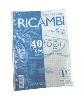 RICAMBIO PIGNA FORATO QUAXIMA A5 40FF 5M